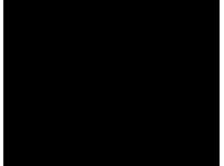 SAPHIR Médaille d'Or